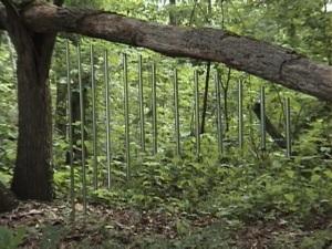 tree chimes